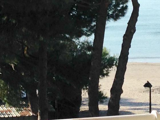 Beau et grand F1 sur plage et mer, confort et standing