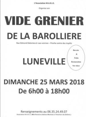 Vide Grenier de la Barolliere - LUNEVILLE