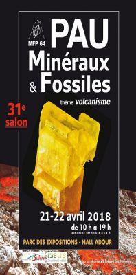 Salon Minéraux et Fossiles de PAU
