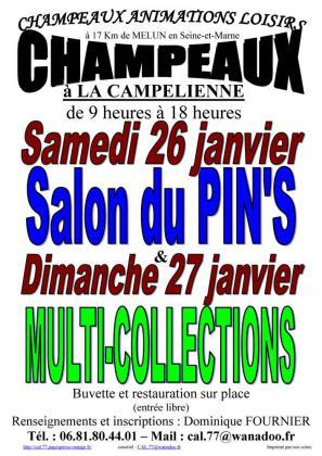 Salon du Pin's à CHAMPEAUX