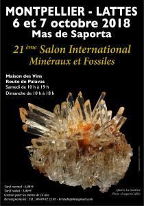 Bourse minéraux fossiles de Lattes