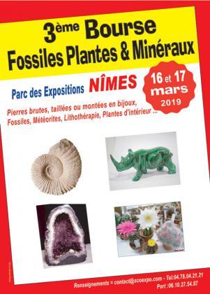 Bourse Minéraux et Fossiles de Nîmes
