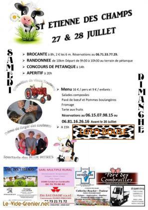 Vide-greniers de St Etienne des Champs