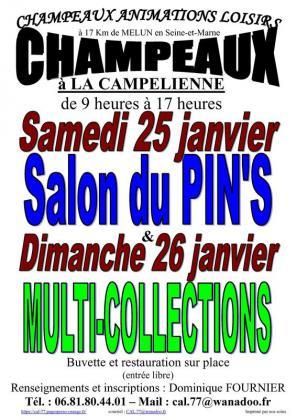 Salon MultiCollections de Champeaux