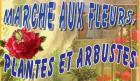 Foire aux plants de Genouilly