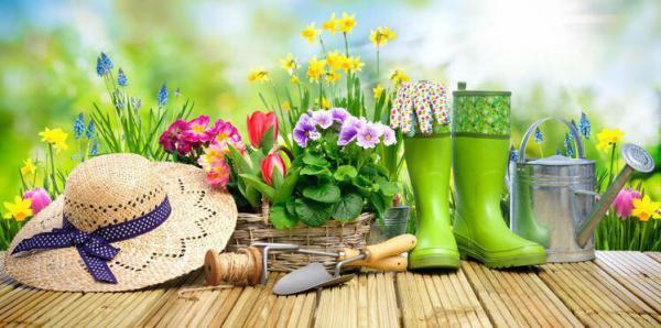 Brocante de jardin - Foire aux arbres et vegetaux de Ry