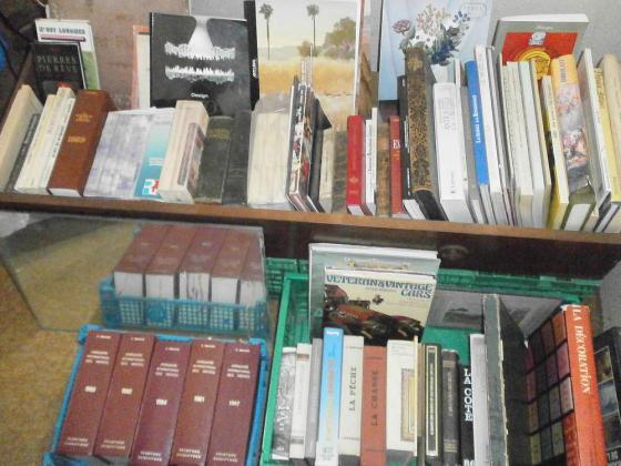 Gros lot de livres divers