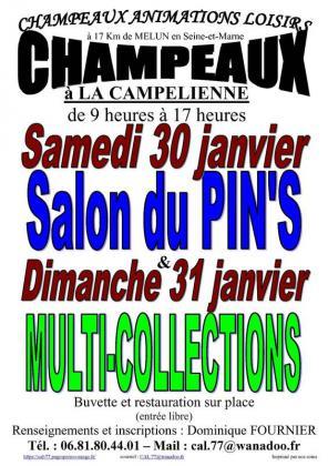 Salon du Pin's de Champeaux