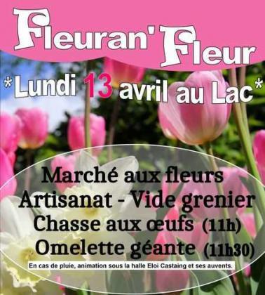 Vide-greniers de Fleurance