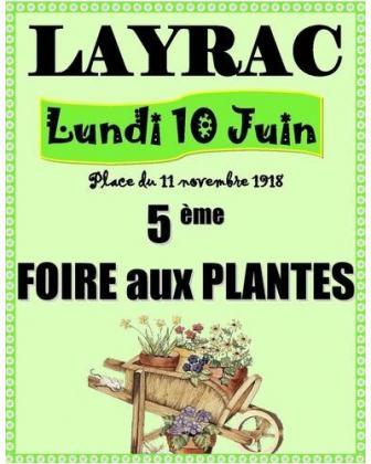 Foire aux Plantes et Marché aux Fleurs de Layrac