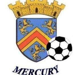 Vide-Greniers de Mercury