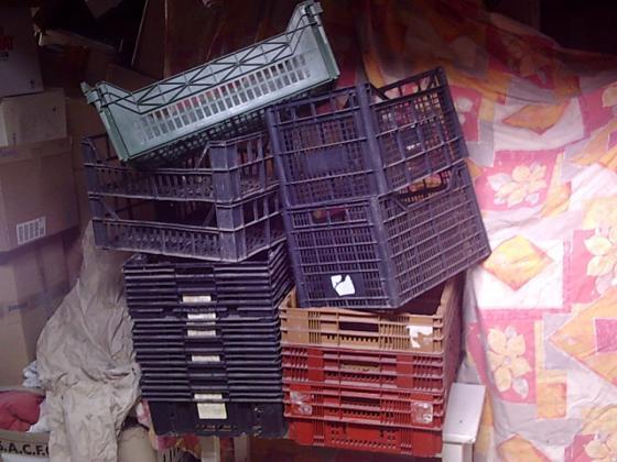 Cagettes Plastiques Agricoles (ou Brico) + Paniers de Récolte en fer