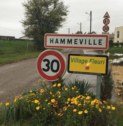 Vide-Greniers de Hammeville