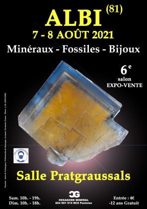 Salon mineraux fossiles bijoux - Albi